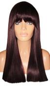 MOKLOX Wig Human Hair Blend Glueless Front Lace 46cm Long Yaki Straight Dark Red Purple Plum 99J Fringe Bangs