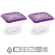 Set of 2 Containers hermeticos Square with Purple Lid 1.7 Litres – BPA Free.