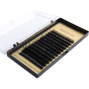 Lunamoon False Eyelashes Extension Individual Fake Eye Lash Volume Natural Professional Salon Perfect Use for Makeup High Quality B-Curl Thickness 0.07mm/0.2mm/0.25mm Length Mix tray 7-14mm