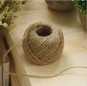 Rcdxing Arts DIY Craft Hemp Rope Wedding Card Gift Wrap Decor