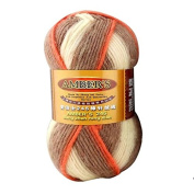 Celine lin One Skein Thick Wool Economy Hand knitting Yarn 100g,Multi-colored07