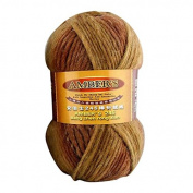 Celine lin One Skein Thick Wool Economy Hand knitting Yarn 100g,Multi-colored06