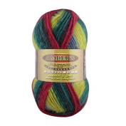 Celine lin One Skein Thick Wool Economy Hand knitting Yarn 100g,Multi-colored38