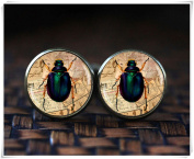 Insect cufflinks, Bug cufflinks,vintage style Insect cufflinks
