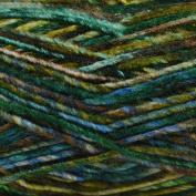 Stylecraft Carnival Chunky Knitting Yarn 100g shade Ecuador 2491