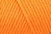 Caron Simply Soft Acrylic Aran Knitting Wool Yarn 170g -9605 Mango