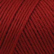 Caron Simply Soft Acrylic Aran Knitting Wool Yarn 170g -9730 Autumn Red