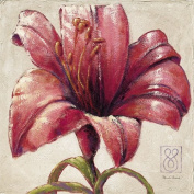 "Eurographics PRE1010 Art Print ""Red Lily Bloom"" by Paula Reed 70 x 70 cm"