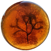 Transparent Brittany hand-made amber lentil soap with algae, argan oil and Loofah - an original, soft and moisturising product. the right choice as a present and decoration 150g