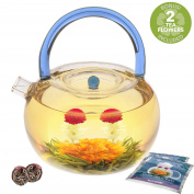 Teabloom Blue Rainbow Glass Teapot Kettle Set - 1200 ml Borosilicate Glass Teapot - Glass Kettle - 2 Flowering Tea Balls Included - Metal Strainer - Stovetop, Microwave Safe