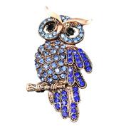 Cdet 1X Brooch Women Corsage Brooch Crystal Rhinestone Owl Brooch Wedding Bridal Pin Dress Scarves Shawl Clip Lady Jewellery Beautiful Charm Decorations