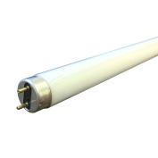 Sylvania F16w - 70cm T8 Fluorescent Tube 70cm 16W - Colour Cool White - 840