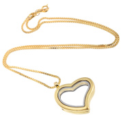 RUBYCA Living Memory Floating Charm Heart Glass Locket Pendant Necklace 50cm 10pcs Gold Colour