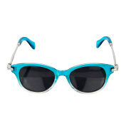 Crummy Bunny Polarised Aqua and Silver Retro Style Glasses for Junior Boys and Girls
