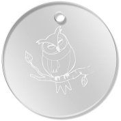 11 x 34mm 'Owl In A Scarf' Clear Pendants / Charms