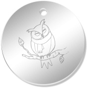 11 x 34mm 'Owl In A Scarf' Mirror Pendants / Charms