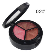 3 Colours Eyeshadow Palette Matte and Shimmer,Waterproof Long Lasting Eye Shadow with Brush VNEIRW