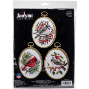 Winter Birds Embroidery Kit, Set of 3, 7.6cm x 10cm , Stitched In Floss