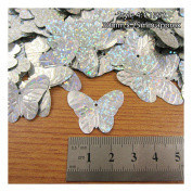 15 Grammes HOLOGRAPHIC SEQUINS EMBELLISHMENTS *6 STYLES* SEWING CARD CRAFTS BUTTERFLY SNOWFLAKE BIRD BRIDE & GROOM (Style 4