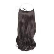 RH Excellence Easy Fit Slip On Dark Brown Hair Extension # 1B