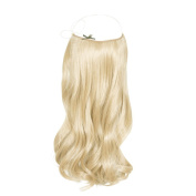 RH Excellence Hair Extension to fit easy fit Very Light Gold Blonde N ° 22