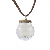 Dandelion Seeds Hope Dried Flowers Glass Bottle Plant Specimens Pendant Necklace Jewellery