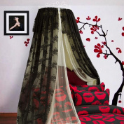 LNPP Elegant Ruffle Lace Bed Canopy Mosquito Netting Dome Princess Bed Mantle , D , 1.8m bed