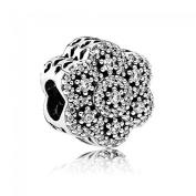 Pandora Women Silver Bead Charm - 791998CZ