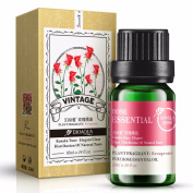 Plant Fragrance Rose Essential Oils for Aromatherapy