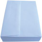 Leader A6 Envelopes (12cm x 17cm ) 50/Pkg Peggable