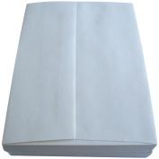 Bo Bunny 7323504 Leader A6 Envelopes [12cm x 17cm ] 50/pkg Peggable-natural