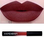 Vasyle European and American gradual matte dullness moisturising non-marking moisturising lip gloss 03
