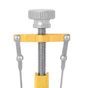 Sharplace Ingrown Corrector Toe Nail Protector Straightener Paronychia Pedicure Stickers Nail Care Orthotic Tool Set