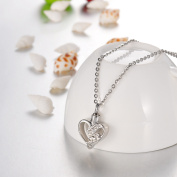 Love Crystal Heart Cremation Jewellery Keepsake Memorial Urn Necklace Ash Holder