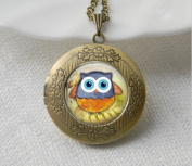 Owl Necklace Locket, Women Necklace Jewellery Art Photo Print Locket Gifts for Her, Glass Dome Art Pendant Locket