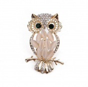 Scrox Fashion Elegant Brooch Diamond Brooch Women Corsage Wedding Bridal Brooch Pin Scarves Shawl Clip Women's Ladies Beautiful Charm Ornament Jewellery Design