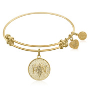 """Yellow Gold-Plated Brass Expandable Bangle with """"Registered Nurse Care Compassion"""