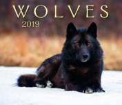 Wolves 2019