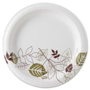 Dixie Ultra SXP9PATH Ultra Pathways Heavyweight Paper Plates 8 .5 in. Green-Burgundy 125 per Pack