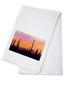 Arizona - Sunset & Cactus Photograph