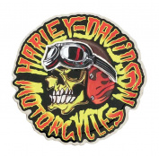 Harley-Davidson Kustom Built Motorcycle Skull Pin, Stainless Steel P049944, Harley Davidson