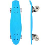 Vokul Professional Complete Longboard Skateboard Cruiser