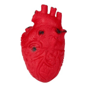 HUHU833 Novelty Silicone Scary Organ Heart Squeeze Toy Stress Reliever Toy