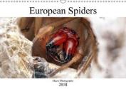 European Spiders 2018