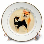 3dRose LLC Shiba in 20cm Porcelain Plate