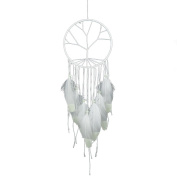 Dream Catcher, Funpa Handmade Dream Catcher Hanging Decorations Feather Glow Ornament for Valentines Day