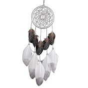 Large Circle-shaped Dreamcatcher with Feathers Car Decorations Colourful Minzhi
