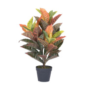 Vickerman T161130 Real Touch Croton Tree in Pot, 80cm