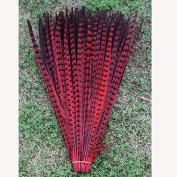 ZZM 10pcs 12-35.6cm Pheasant Feathers DIY Decoration Accessories