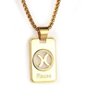 Bishilin Stainless Steel Necklace Mens with Pendant Rectangle Dog Tag 12 Zodiac Necklace for Men Gold
